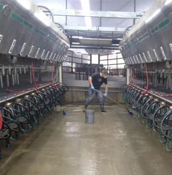 coated milking station 1